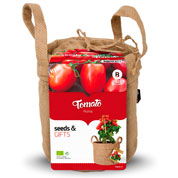 kit de culture tomates cerise -black cherry
