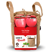 kit de culture tomates cerise -thai pink egg