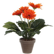 plante artificielle - gerbera orange - mica